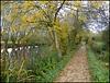 Fiddler's Path in autumn