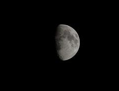 Half moon sighting