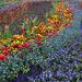 Farbenmeer ++ sea of colors