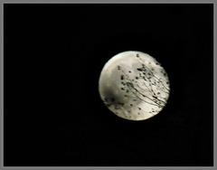 la lune dans la soirée du 2 Novembre 2020