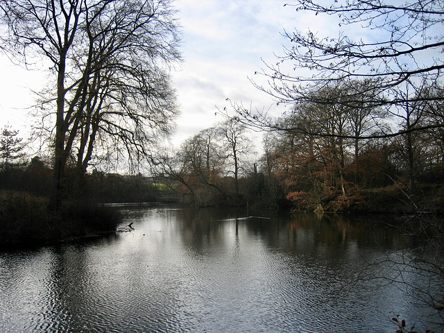 Park Lime Pits.