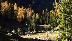 Herbst im Rofan