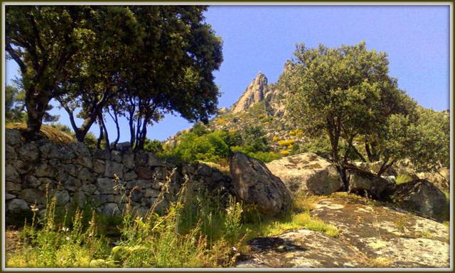 By the monastery garden wall. La Sierra de La Cabrera