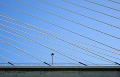 Parallel  Lines and Intersecting Lines