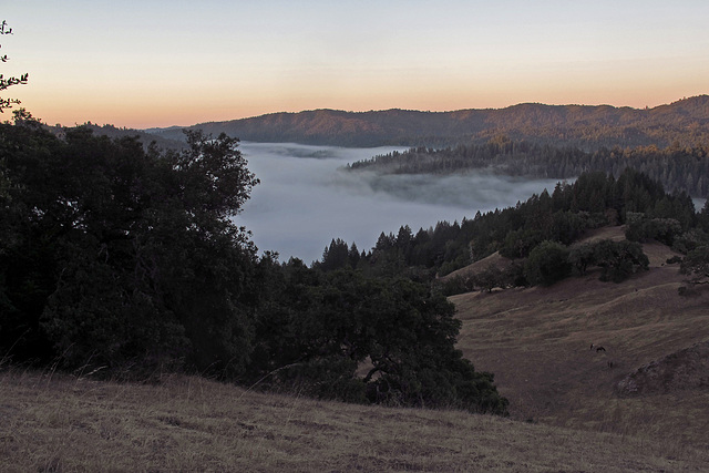 Morning View From Julie Andrews Point (1301)