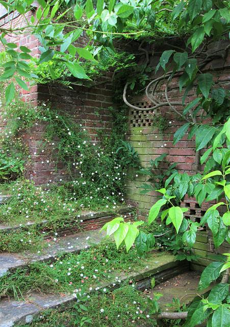Quiet Steps...Great Dixter.