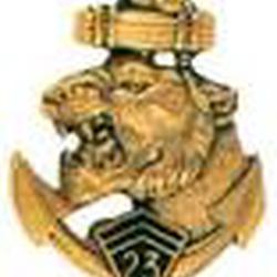 Médaille du 23 RIMA