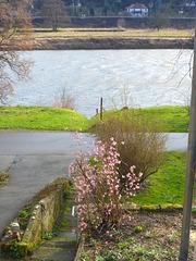 Elbe im Frühlingssturm - la Elbo en printempa ventego