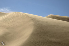 Oregon Dunes National Recreation Area (+10 insets and a sandy adventure!)