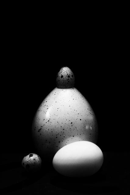 III eggs