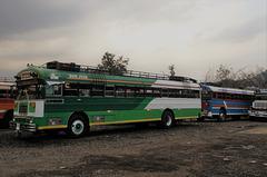 Don Jose bus