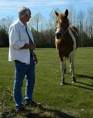 Bob et le cheval