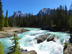 Wasserfall am Kicking Horse Pass