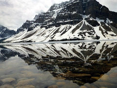 Rocky Mountains Bow-See
