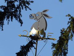 Weather vane, Old Stables, Whitmore, Staffordshire.