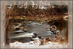 Am wilden Fluß - The River Wild
