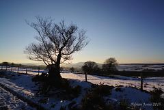 Shropshire Snowscape