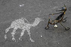 Le chameau à une bosse