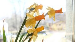 spring time...