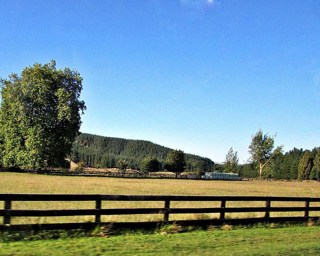 Beyond the Farm Fence.