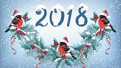 Feliĉan Novan Jaron!! Happy New Year!!
