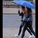 """""""Umbrella(s)"""""""