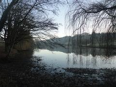 Magnifique vue sur l'étang