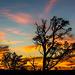 Sunset at the Grand Canyongg