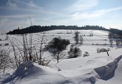 Licht und Schatten im Winter