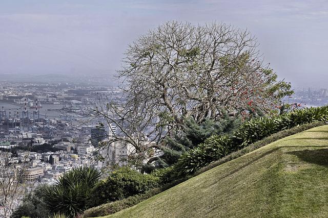 A Slippery Slope – Baha'i Gardens, Haifa, Israel