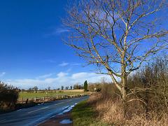 Roman Road, Lapley