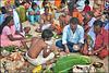 Jour de pèlerinage à Ramswaram