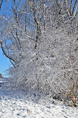Winterzauber in Le Noirmont