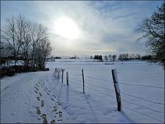 Valdahon (25) 27 février 2020. Matin hivernal.