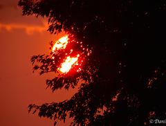 *** Lever de soleil ***