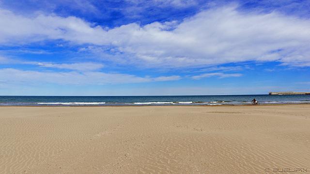 a la platja de València (© Buelipix)