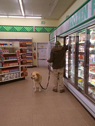 An old dog goes shopping