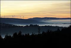 Der westliche Nordschwarzwald
