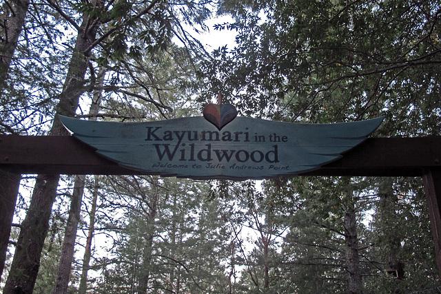 Wildwood Retreat (1341)