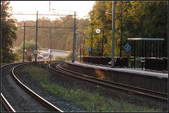 S-Track's