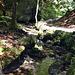 Bachlauf, Wasser, Steine, genau das richtige um Kindern beim Wandern etwas Abwechslung zu bieten ( kleiner Abenteuerspielplatz )