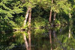 Canal Saint Jean