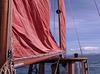 MFW - sailing test 05