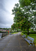 HFF from the Red Horse Chestnut Tree, Dumbarton Quay