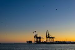 abends beim Hafen von Malaga (© Buelipix)