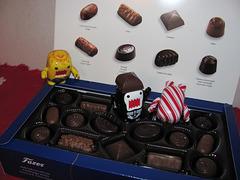 Oh no! Domos got into my chocolates!