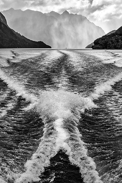 The Doubtful Sound