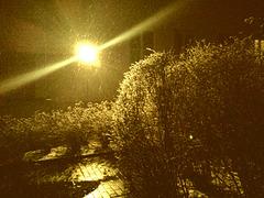 Der erste Schnee ...