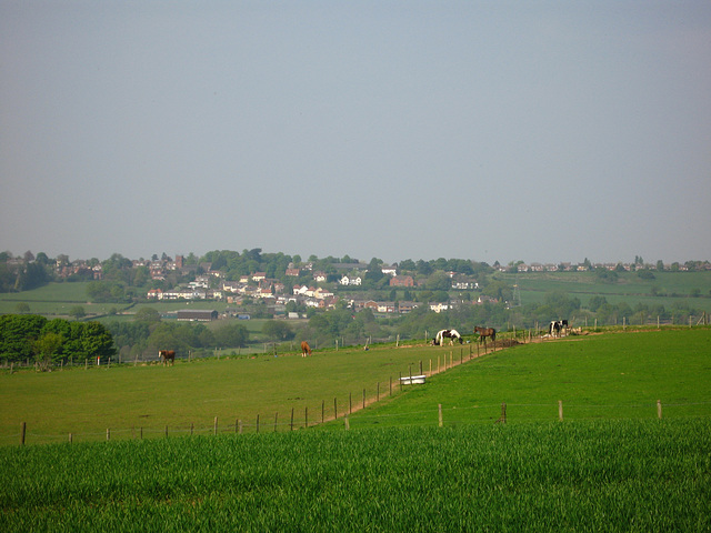 Looking North from near Baggeridge Wood Farm