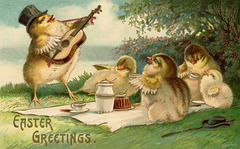Easter Serenade for the Picnic Chicks